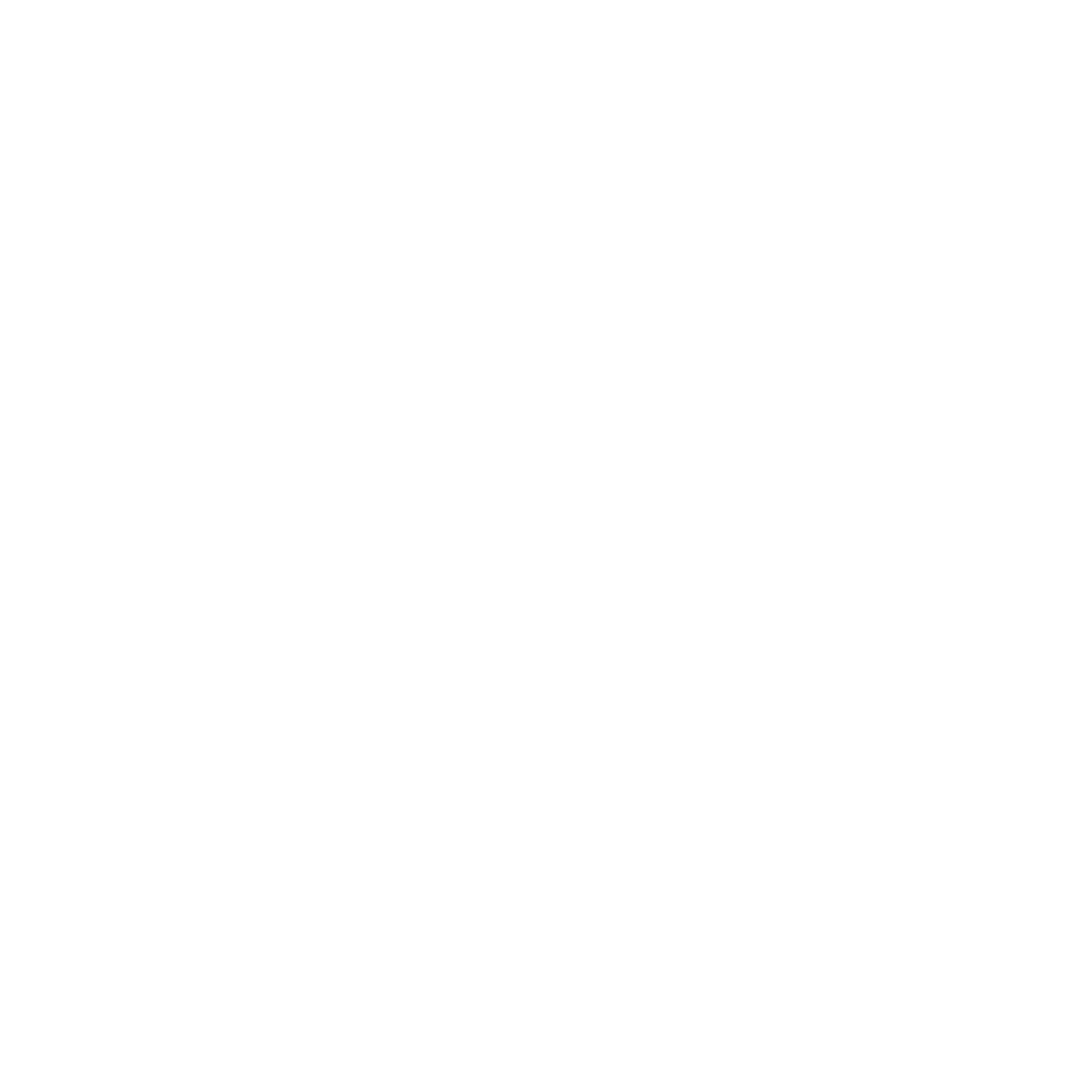 THE BASEMENT THEATRE - GRUNGE LOGO